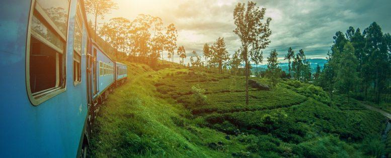 Архив. Аэрофлот: Шри-Ланка на Новый год 33 800 рублей