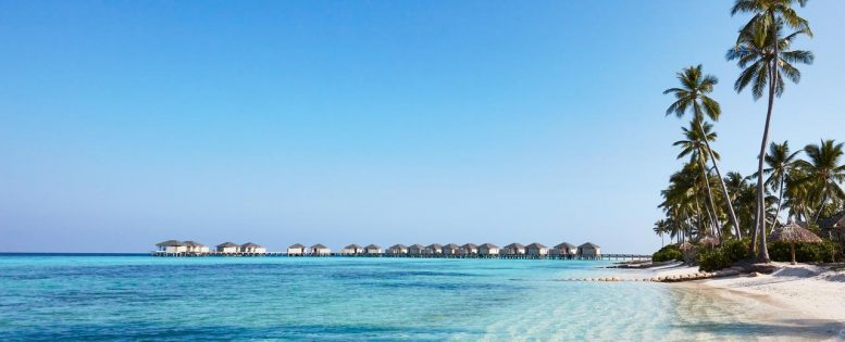 Архив. Неделя на Мальдивах 80 800 рублей, питание включено
