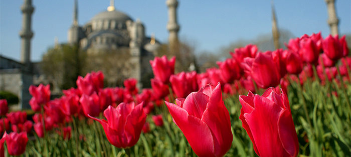 Из Санкт-Петербурга в Стамбул 11 700 рублей