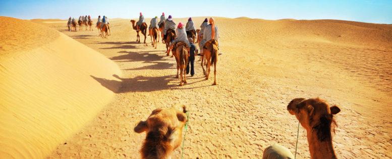 Тунис весной 14 400 рублей *АРХИВ*