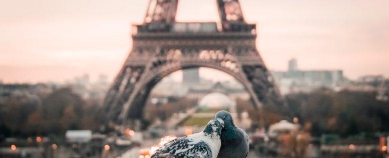 В Париж на 8 марта 13 800 рублей *АРХИВ*