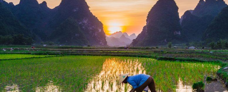 Архив. Во Вьетнам весной 20 200 рублей