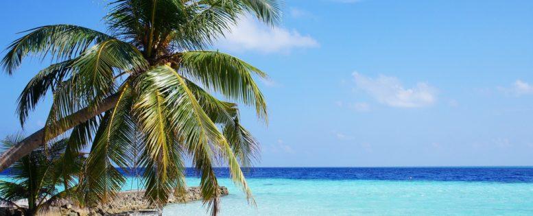 Неделя на Мальдивах 41 200 рублей *АРХИВ*