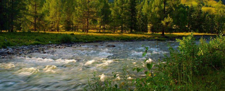 Архив. На Алтай летом 4 000 рублей