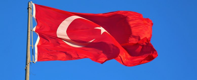 Россия возобновляет авиасообщение с Турцией и другими странами